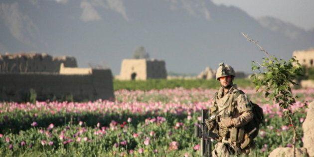 Gulf War Syndrome: Veterans Skeptical Of Ottawa's Pledge To Examine Depleted Uranium