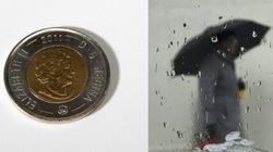 Toronto Warned Of 'Toonie Size'