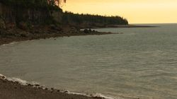 Boy Swims To Safety After Bay Of Fundy