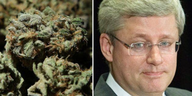 C-10 Crime Bill: Harsher Sentences For Pot Growers Than For Pedophiles Caught PM Stephen Harper's Eye...