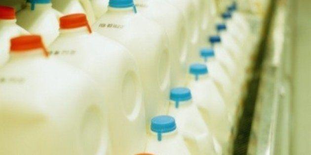 Michael Schmidt, Raw Milk Advocate, Gets $9,150 Fine, 1 Year