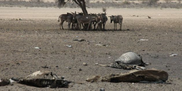 East Africa Drought Threatens 10 Million, Say Aid