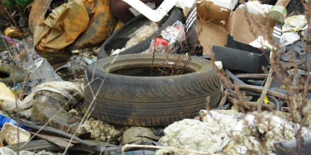 Newfoundland Trash Problem: St. John's Hiring Security To Catch
