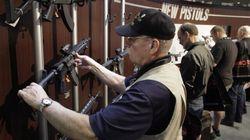 Ottawa To Provinces: Do Your Own Work On Gun