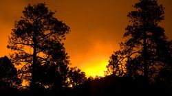 Forest Fires Rage In Northern