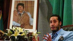 Mexico Was No Gaddafi Getaway, Says Former