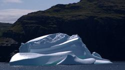 It's An Iceberg Extravaganza In