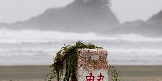Volunteers Sought For West Coast Tsunami Debris