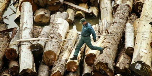 B.C. Lumber Exports To China Exceed $1 Billion In 2011; Up 200 Per Cent From