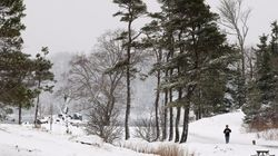 Spring Snowstorm Wallops