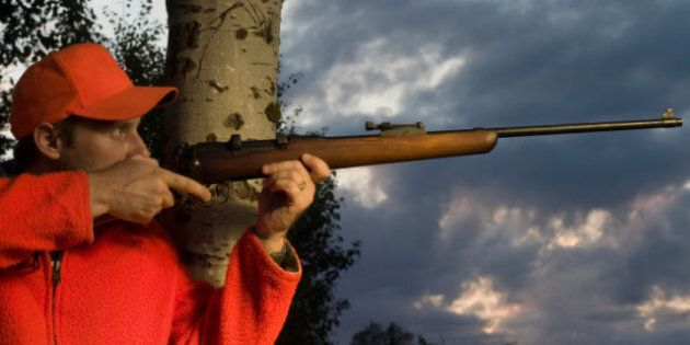 Gun Registry Bill At Final Stage In House Of
