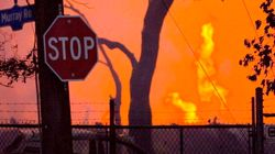 Company Directors Sentenced Today In Deadly Toronto