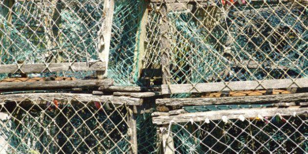 Nova Scotia Fisherman Found Dead On Parrsboro Shoreline, Another Still