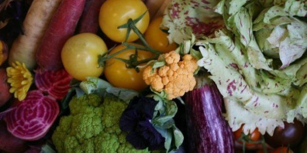 Antioxidants In Purple Vegetables High, Say