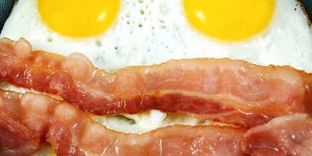 The Other Side of Saturated Fats: Health Benefits of a Fat Rich