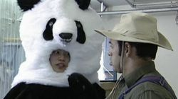WATCH: 22 Minutes Wonders If Chinese Panda Is Really A