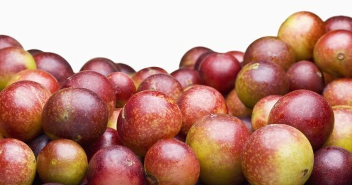 Camu Camu Benefits: 11 Things You Need To Know About The Fruit