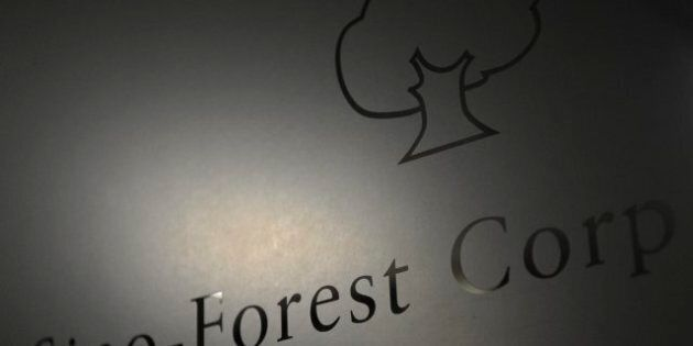 Sino-Forest Fraud Allegations Leveled By Ontario Securities