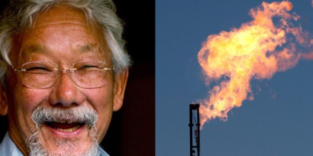 David Suzuki: Saskatchewan Fires Back At Environmentalist's Foundation Over Climate Change