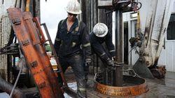 Tories Slashing Federal Role In Environmental