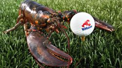 Is Cape Breton Lobster The Next Culinary