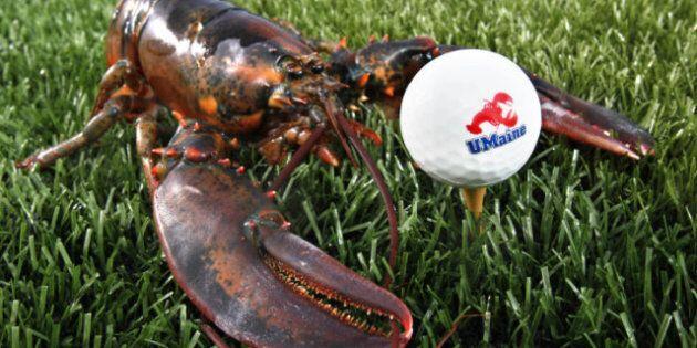 Fourchu Lobster: Cape Breton Crustaceans The Next Culinary