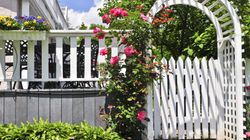 10 Surprising Tips To Plant The Perfect Garden From Peter
