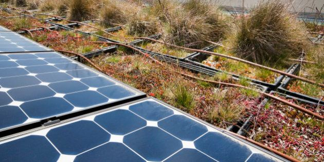 A green building conserves energy and practices sustainability using rooftop solar panels and an outdoor urban garden