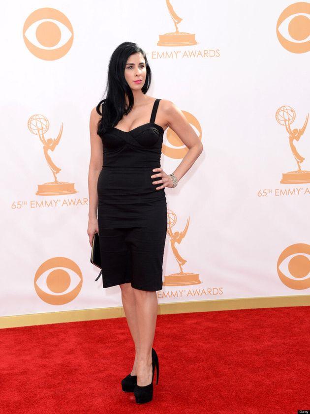 Sarah Silverman Emmys 2013: Comedian Wears $60 Dress She Bought Online