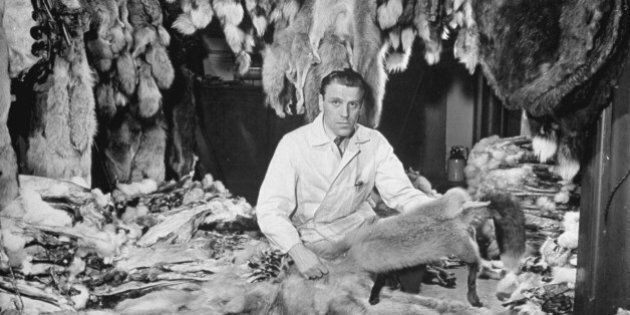 Man sitting among raw furs at the Hudson's Bay Company. (Photo by Wallace Kirkland/Time Life Pictures/Getty