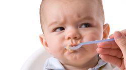SavvyMom Roundup: Carnivorous Babies, Free Range Parenting, Bacon Panic and