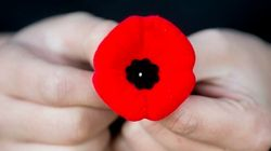 Target Backtracks On Remembrance Day Poppy