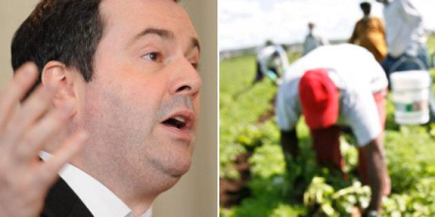 Temporary Foreign Workers Canada Blacklist: Jason Kenney Wants Permanent Ban On Employers Who Abuse Migrant