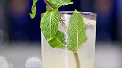 TIFF 2011: Try The Cocktails The A-Listers Will Be