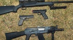RCMP Takes Down Pellet Gun-Toting
