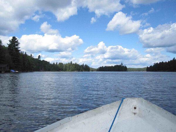 Visit to Canoe Lake: Tom Thomson's