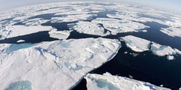 Arctic Fishing: Scientists Call For Moratorium On Commercial Fishing In Arctic