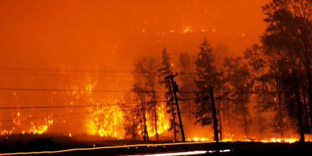 B.C. Wildfire Season 2013: More Fires, Fewer Trees
