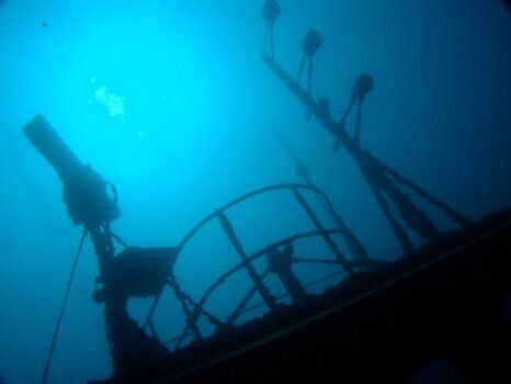 Diving in Tobermory, Or Watching the Worm
