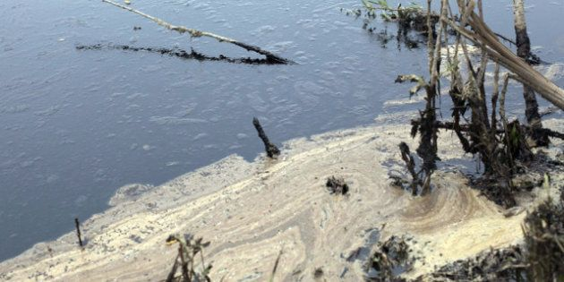 Alberta Oil Spill: Plains Midstream Canada Still Can't Say How Long Cleanup Will