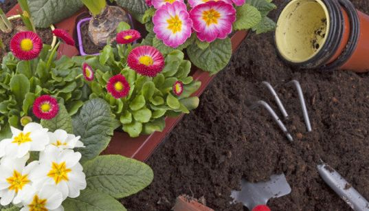 Spring Gardening: Gorgeous Containers To Pot Your Plants In