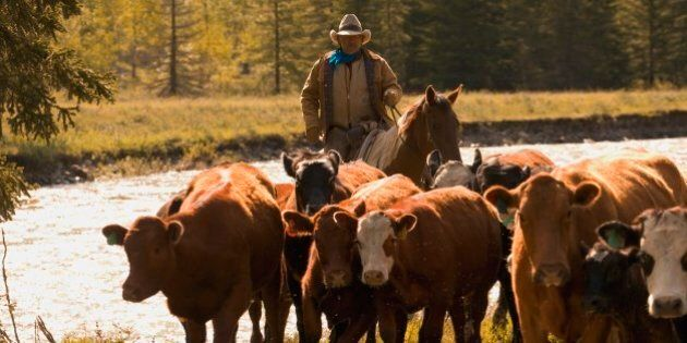 Alberta Public Land Use Changes Proposed By Redford