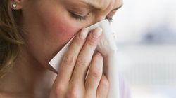 Warm Winter Could Spell Allergy