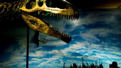 'The Most Unusual Dinosaurs That Ever