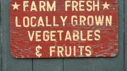 What's In Season? A CSA Can Tell