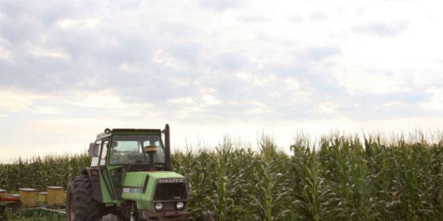 What the U.S. Farm Bill Says About American