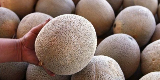 Killer Cantaloupes, Scary Sprouts: Reduce The