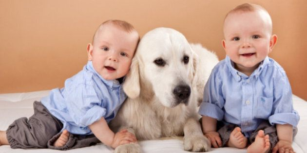 Preparing Pets For A New Baby: Experts Say It Will Benefit Animals And