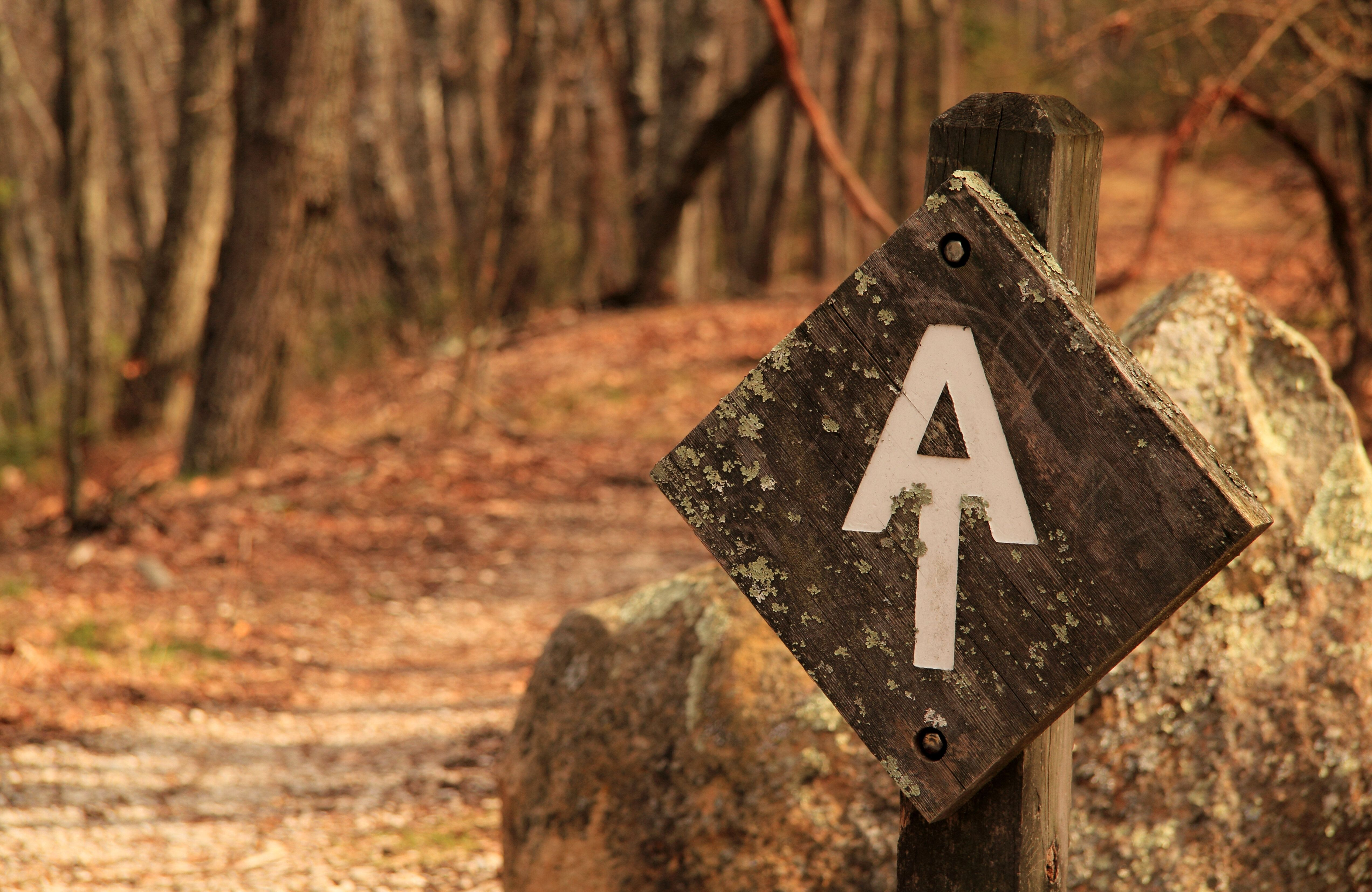 Appalachian Trail along the Blue Ridge Parkway in the State of Virginia