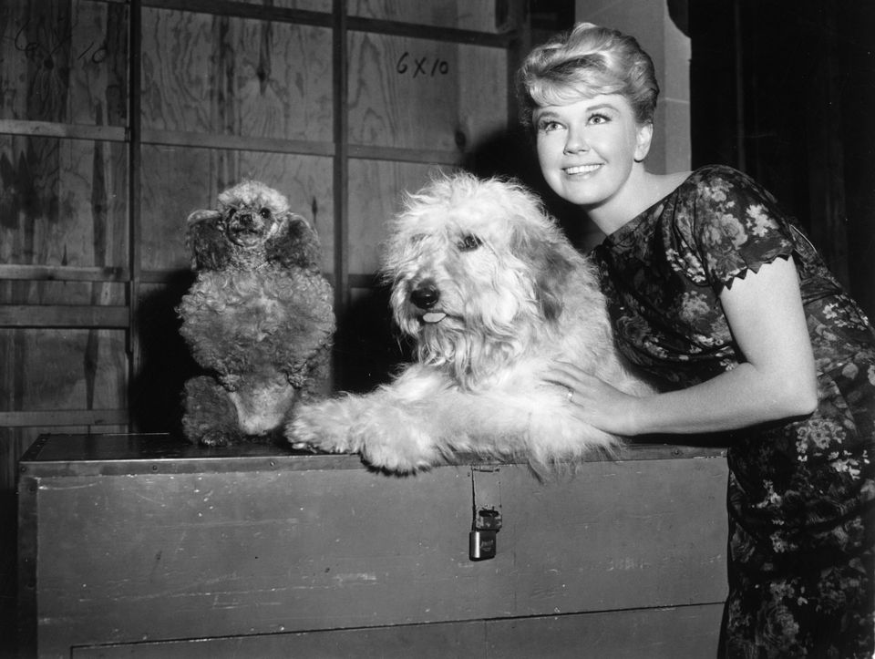 Westlake Legal Group 5cd9814924000059007e9e37 A Look Back At Doris Day's Life And Career In Photos